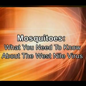Mosquitoes: What You Need To Know About The West Nile Virus
