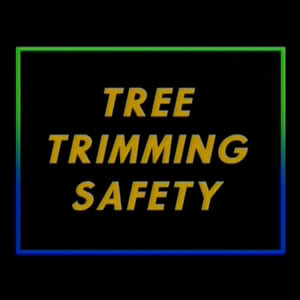 Tree Trimming Safety