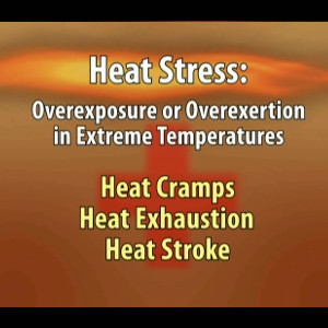 Heat Stress: Real Accidents. Real Stories